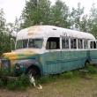 Чарівний автобус 142 (Magic Bus)